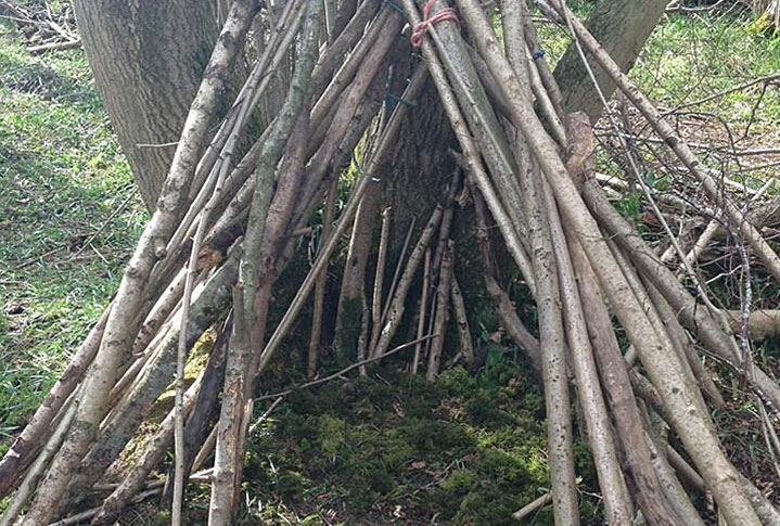 What is Forest School? :: Badger Wood Adventures